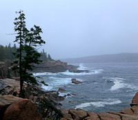 Rain along the Maine coast