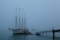 Schooner Margaret Todd Fogbound - Bar Harbor, Maine